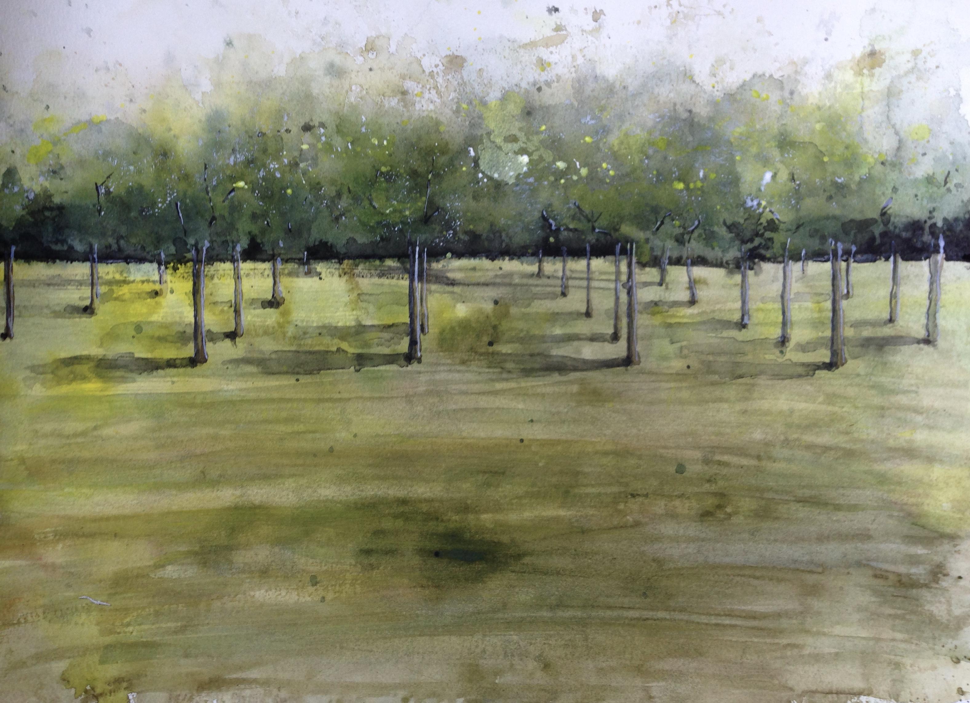 landscape (168)