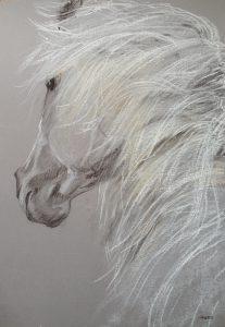 18-paardenhoofd/potlood & krijt