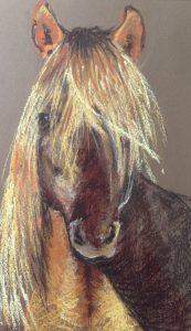 S-12 paardenhoofd/pastel