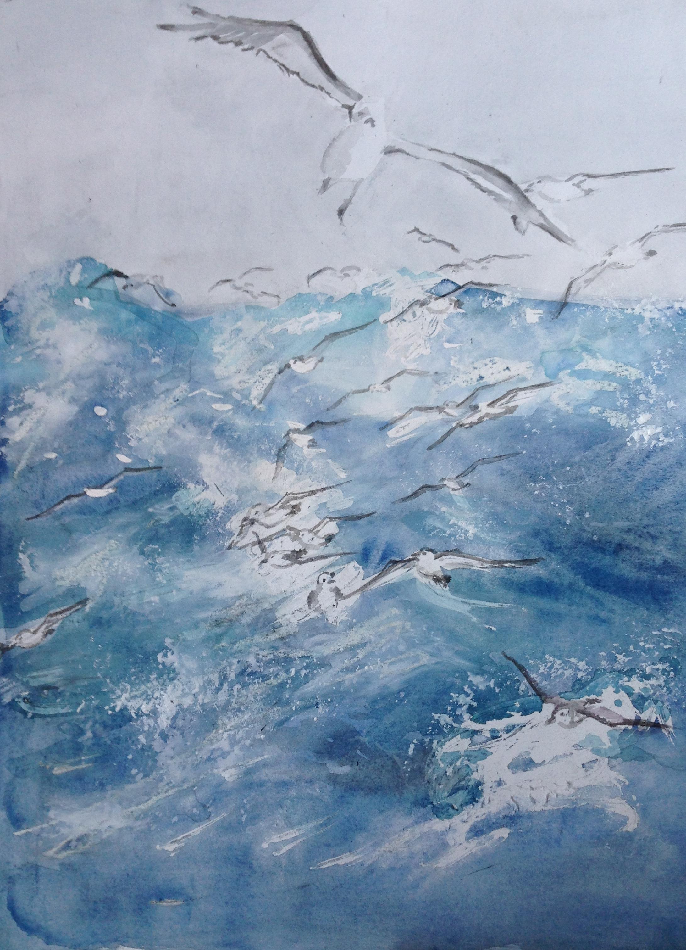 zee & meeuwen (66)