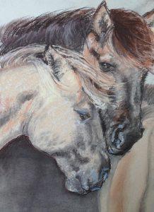 31-2 paarden/pastel (wet)