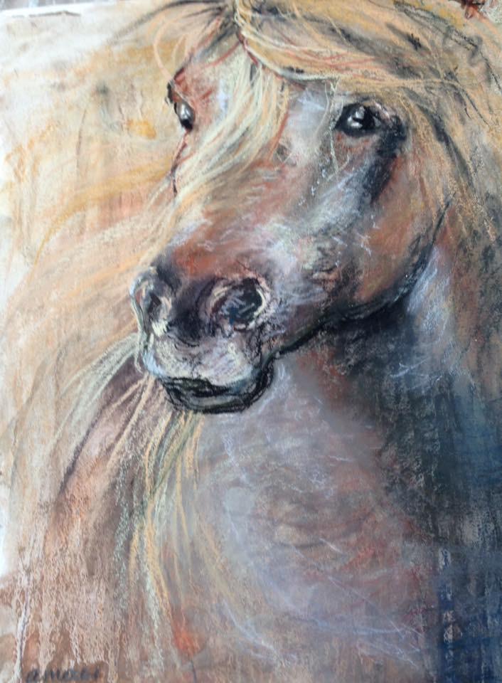 34-paardenhoofd/wet pastelGeheven paardenhoofd (62)