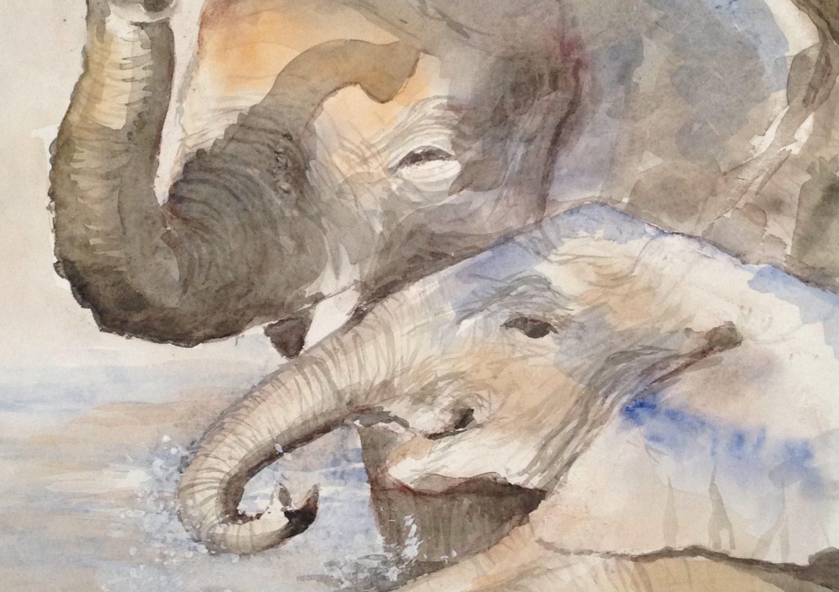 64-olifantenbad/aquarel 29x38cm