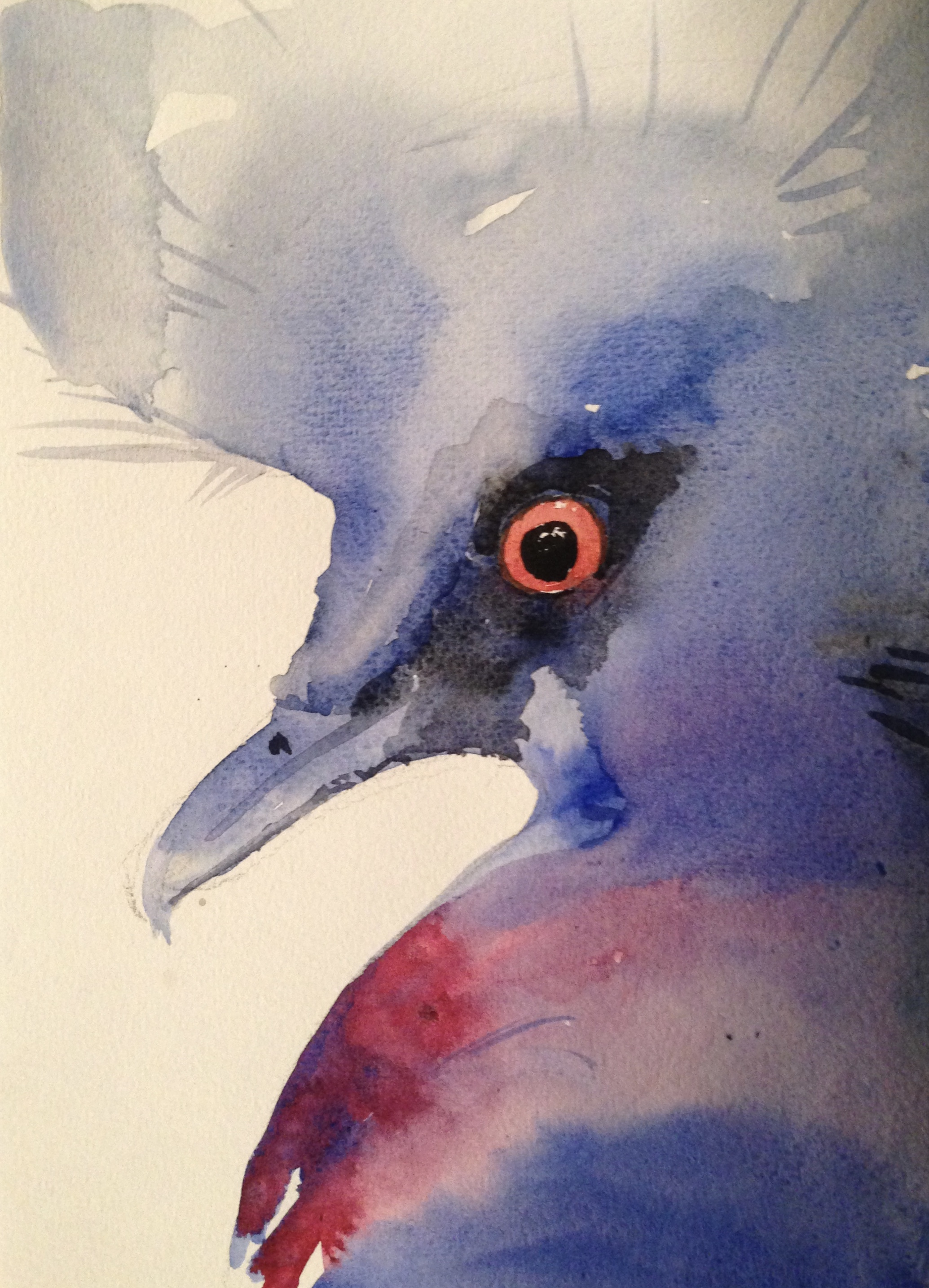 65-Blue bird/aquarel 14X19cm