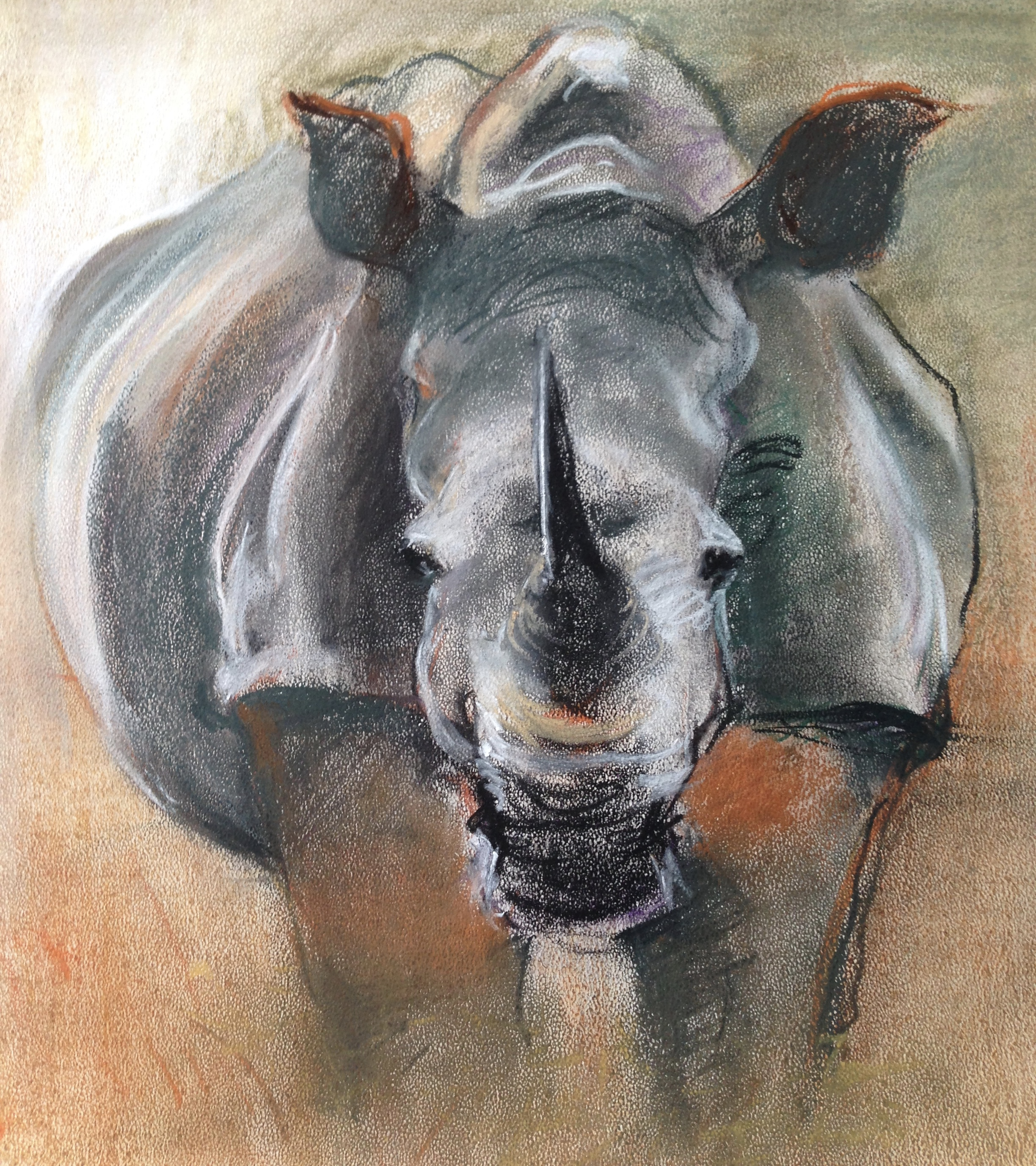 82-Rhino/pastel