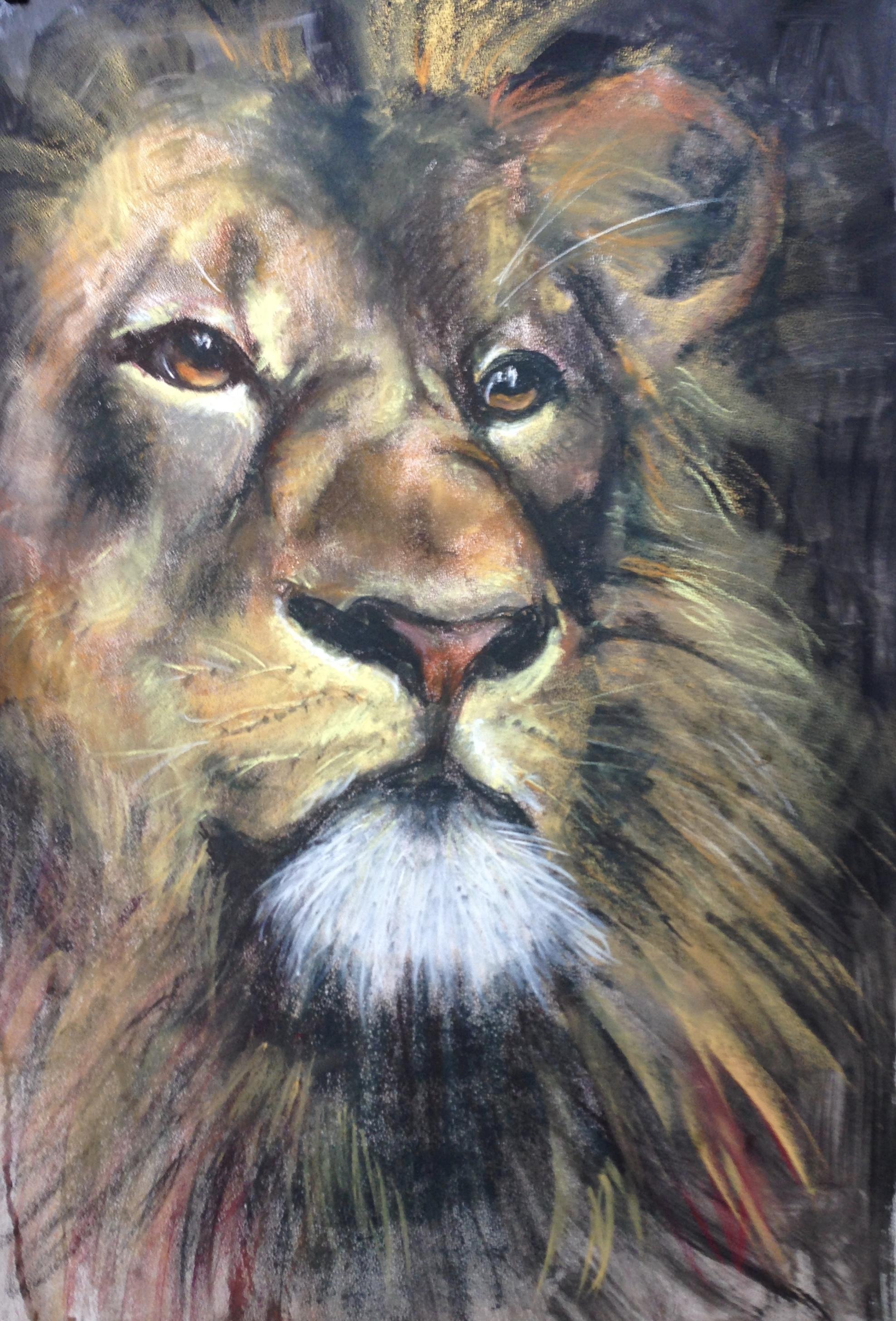 125_Leo/wet pastel 50 X 70cm