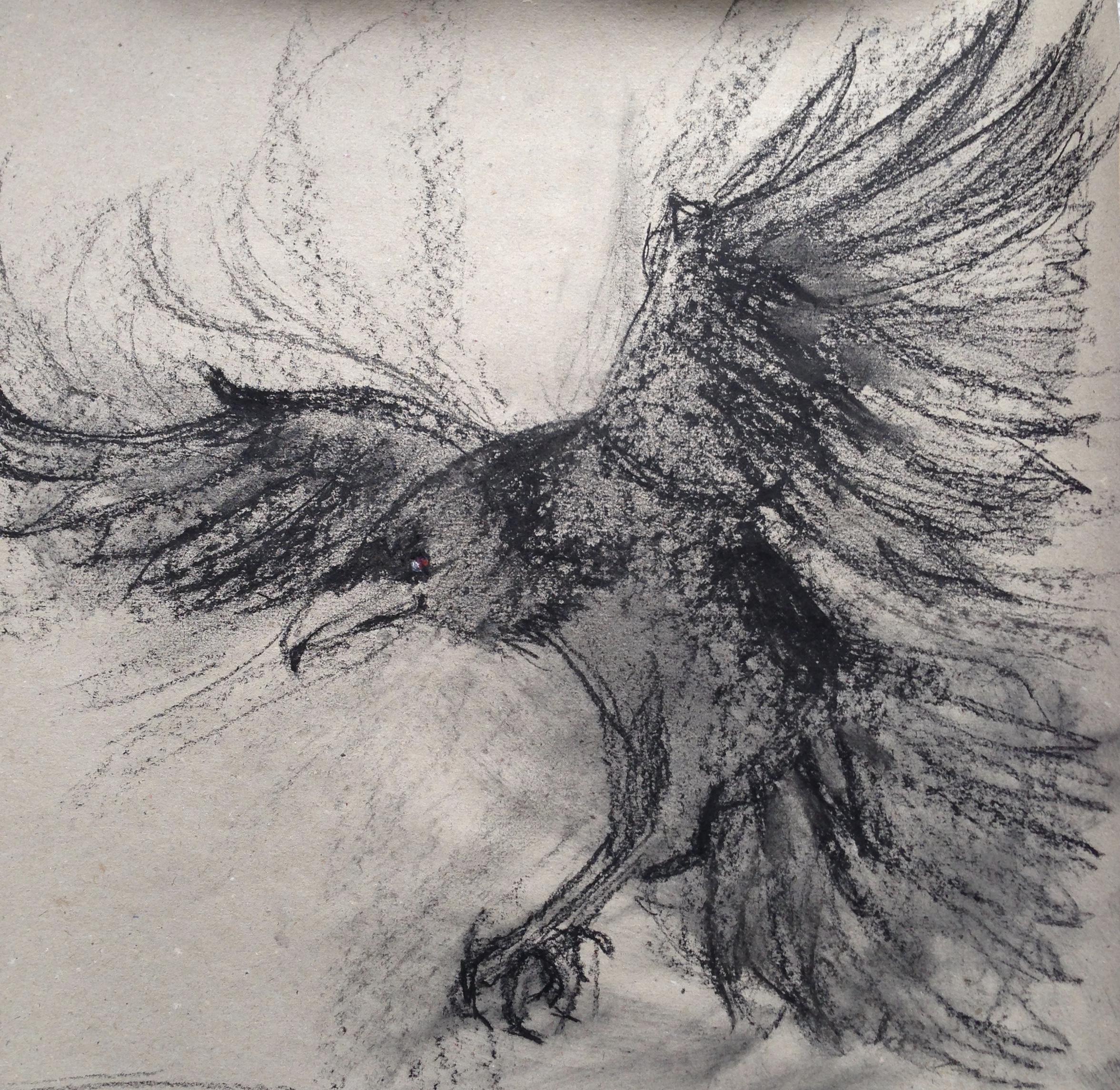 135-Raven/charcoal 30 X 30cm