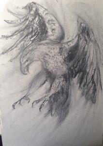 138-Raven/houtskool 20 X 30cm