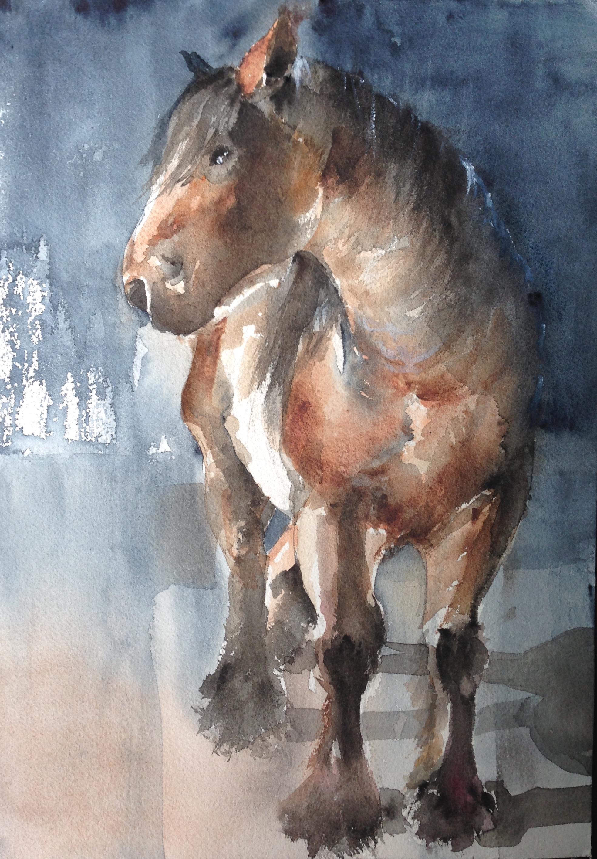 145-Horse/aquarel 25 X 35cm