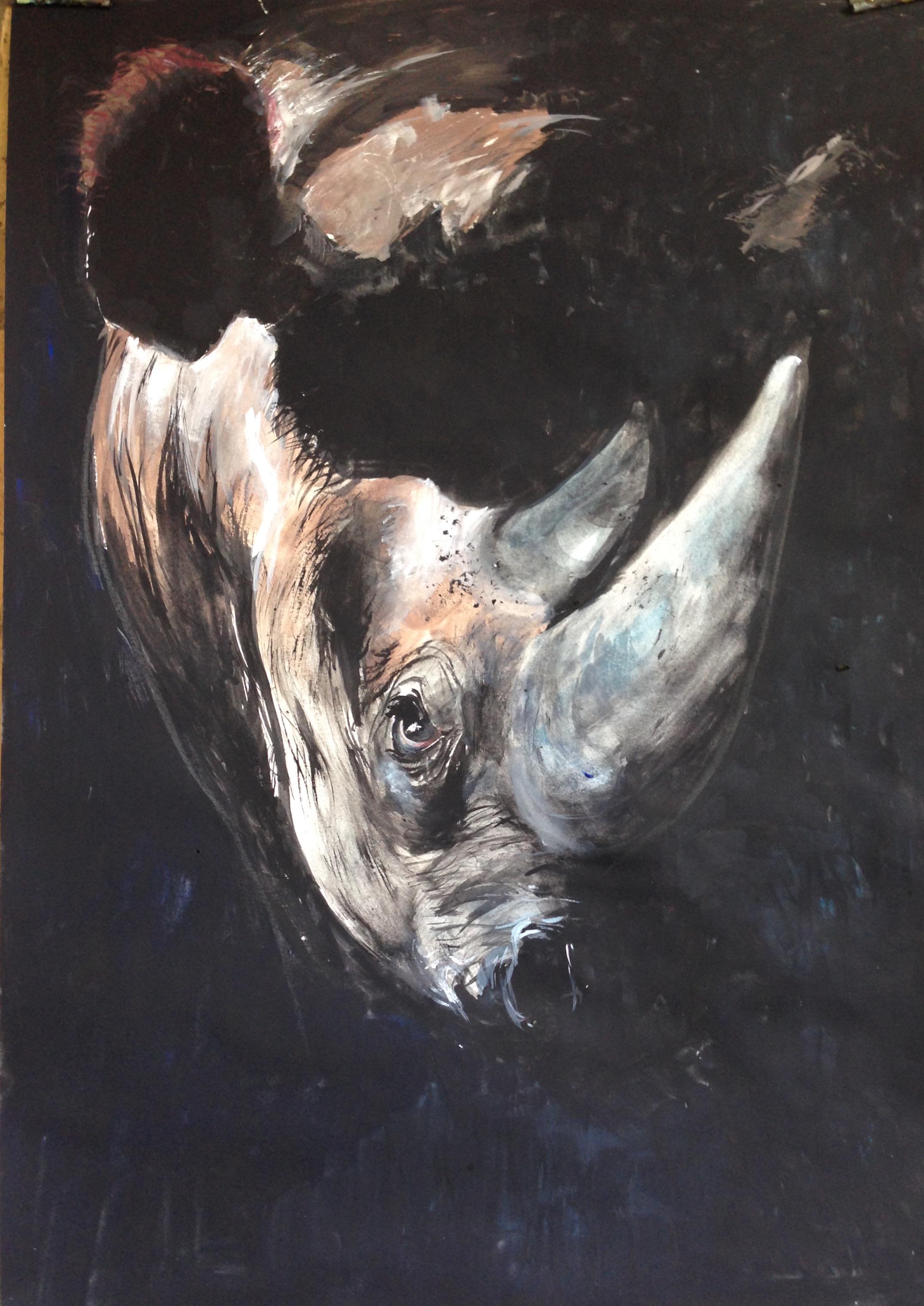 152-Rhino/gouache 40X60cm