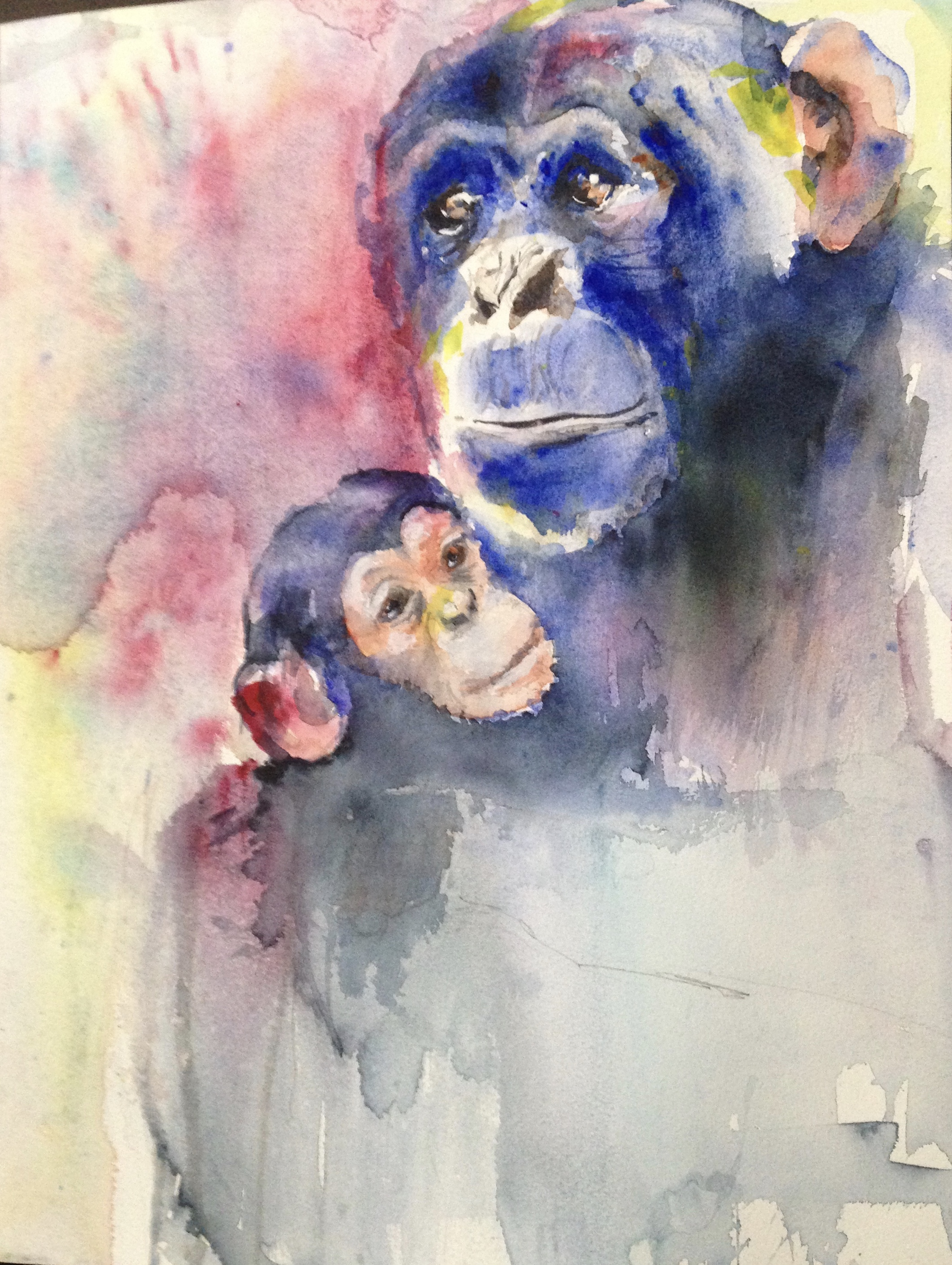 S-165/chimps/aquarel 30X40cm