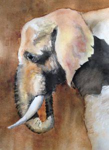 170-Olifant/aquarel 30x40cm