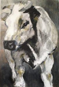 172-Cow/acryl 60X90cm