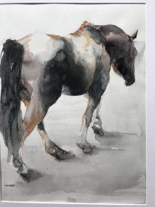 184-horse/aquarel 30X40cm