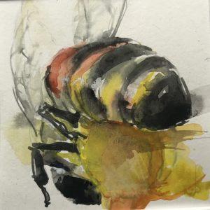 S-181 Bee/aquarel 12x12cm