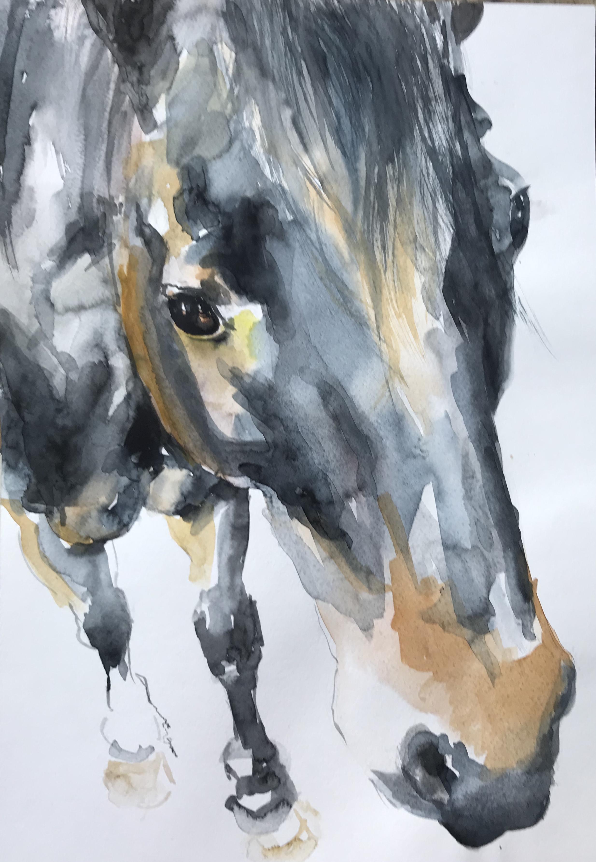 183-Horse/aquarel 30 x 40cm