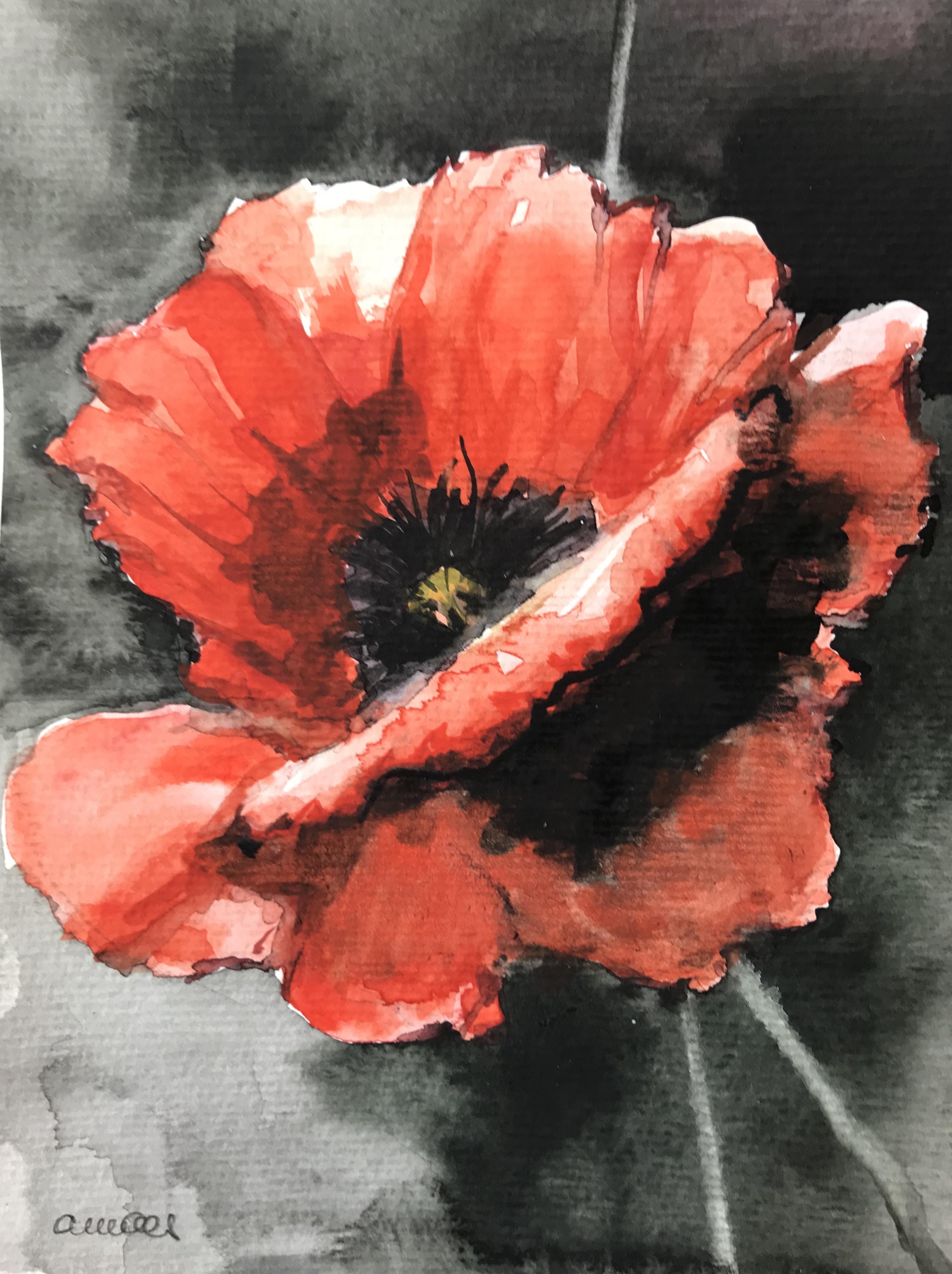 193-poppy/aquarel 14X18cm
