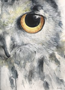 194-Snowowl/aquarel 30 x 40cm