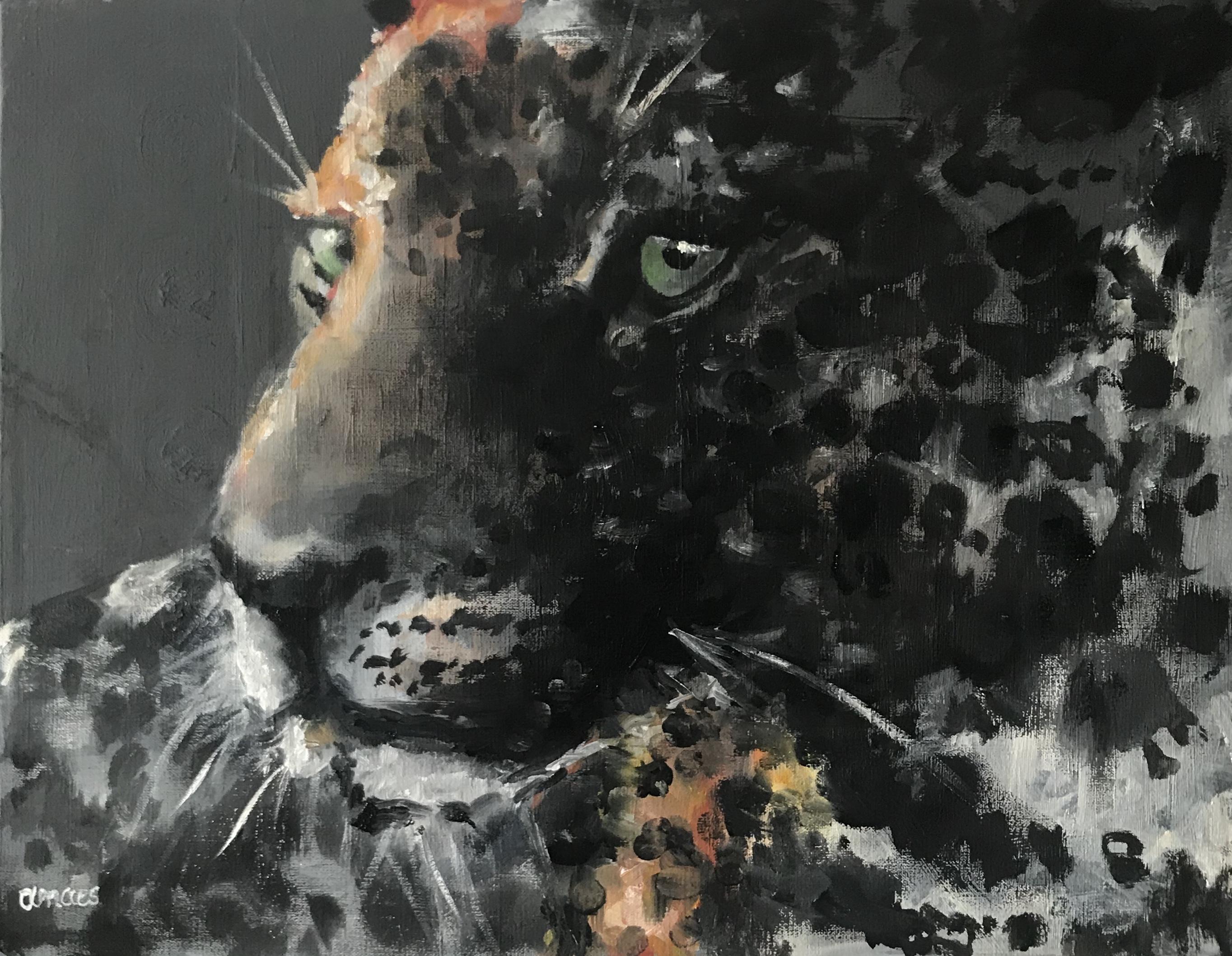 198-cheetah/olieverf 35x45cm