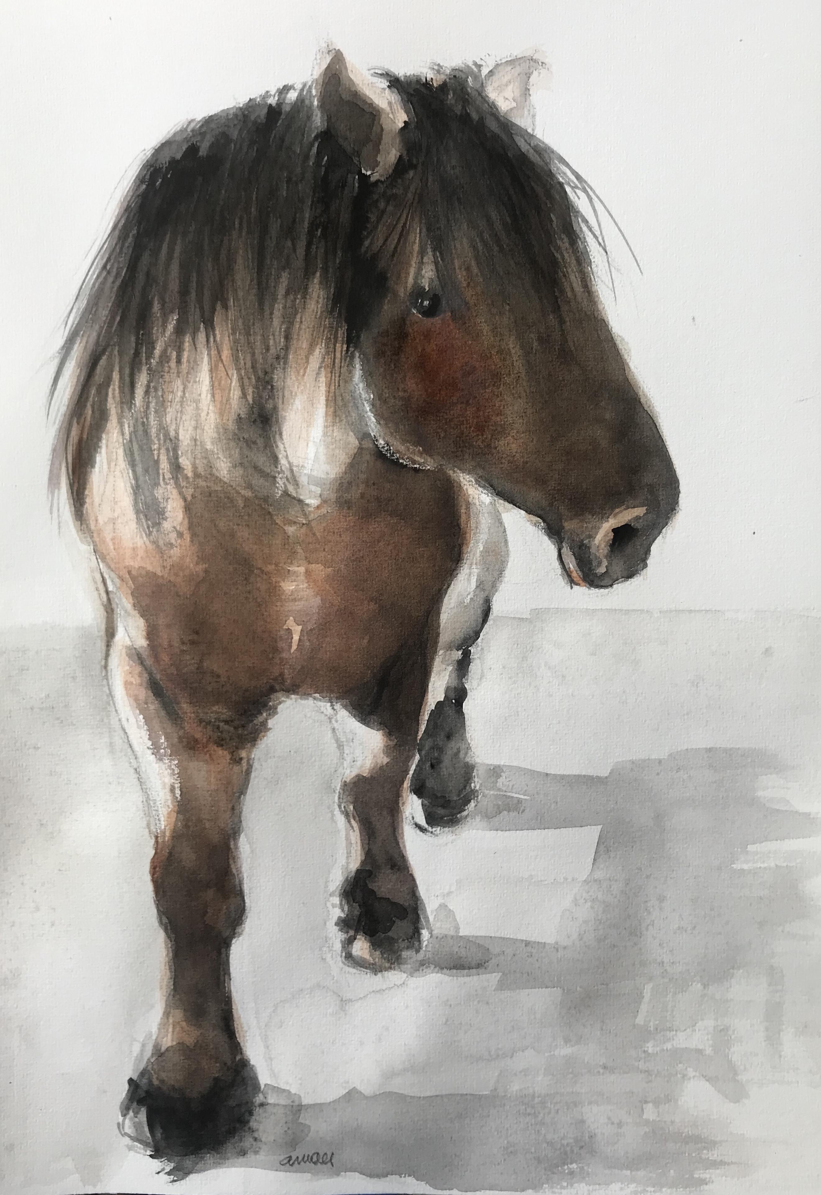 206 Horse/aquarel 30 X 40cm