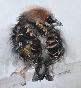 S-207-sparrow/aquarel 12X12cm