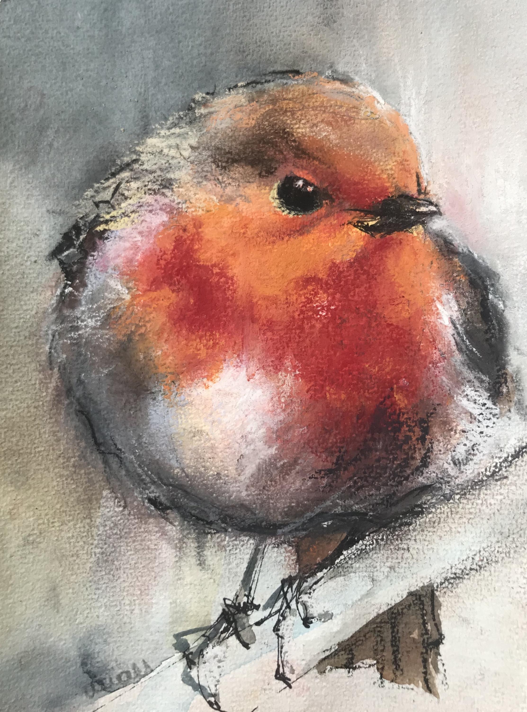 215-Robin/pastel 14x18cm