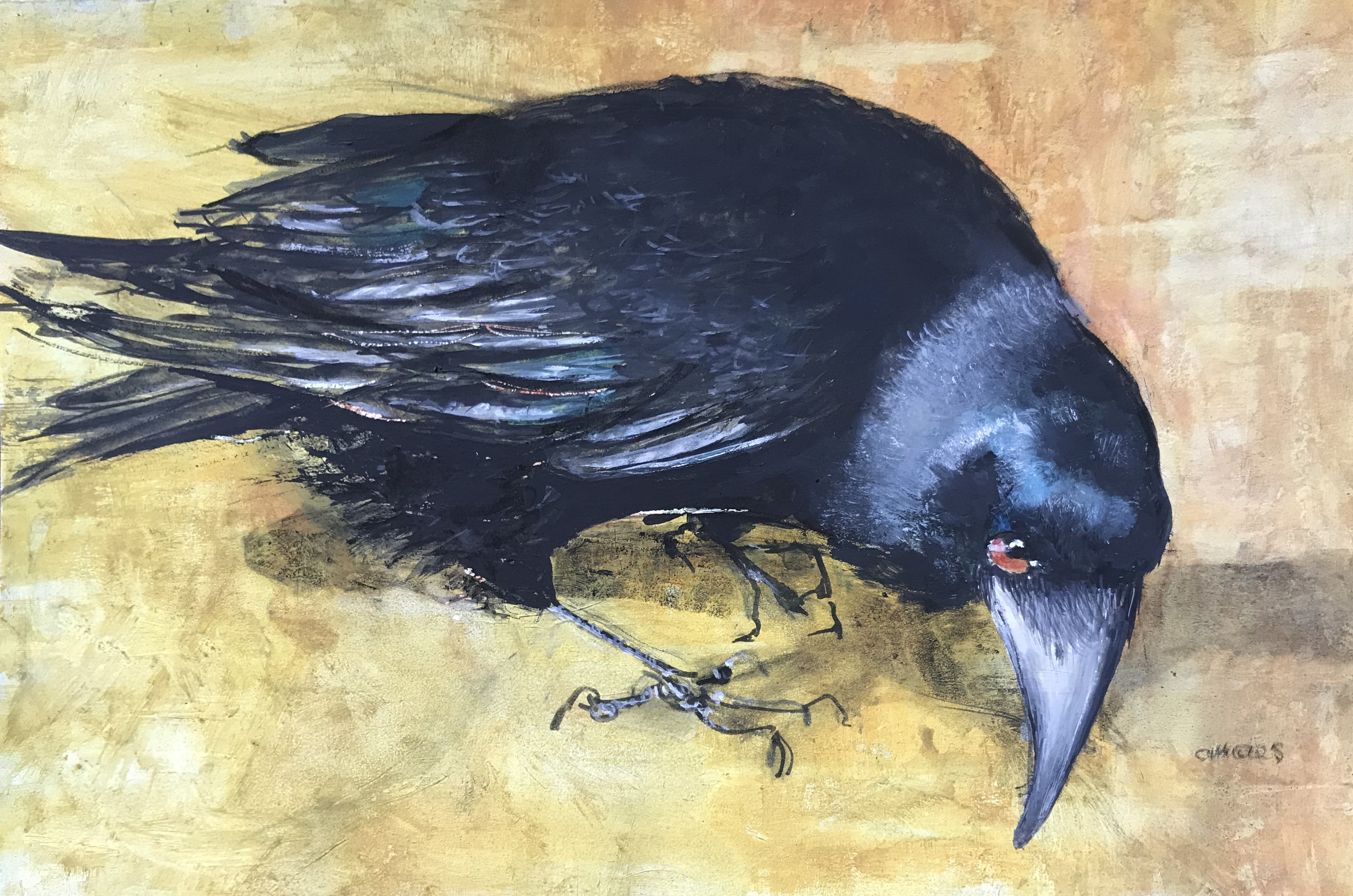 216-corvidae/mixed media 30x44cm