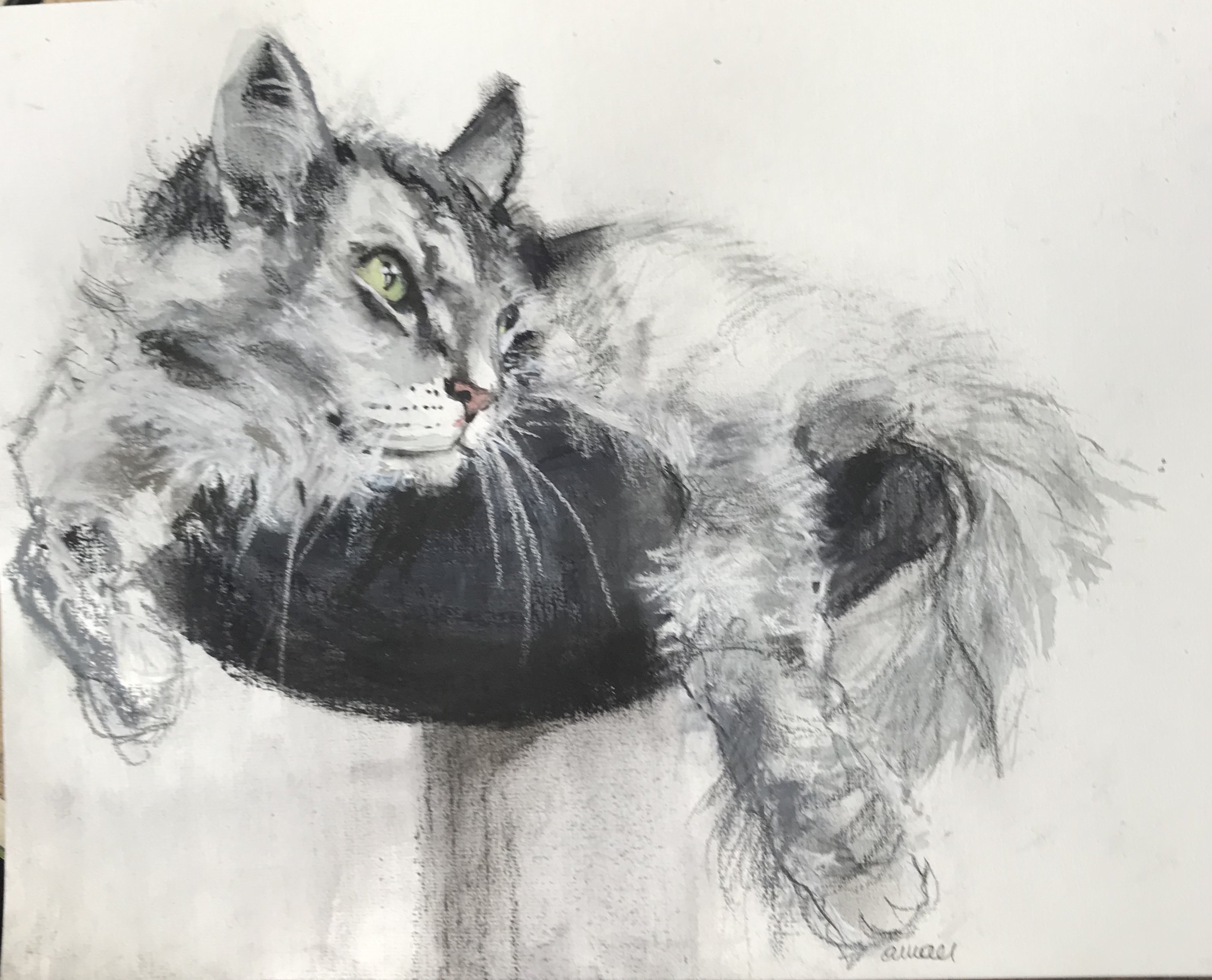 S-220-Louie/aquarel&pastel