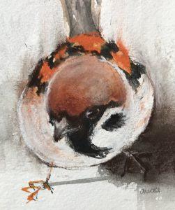 230-sparrow/pastel 12x18cm