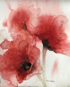 233- poppys/aquarel 14x18cm aquarel