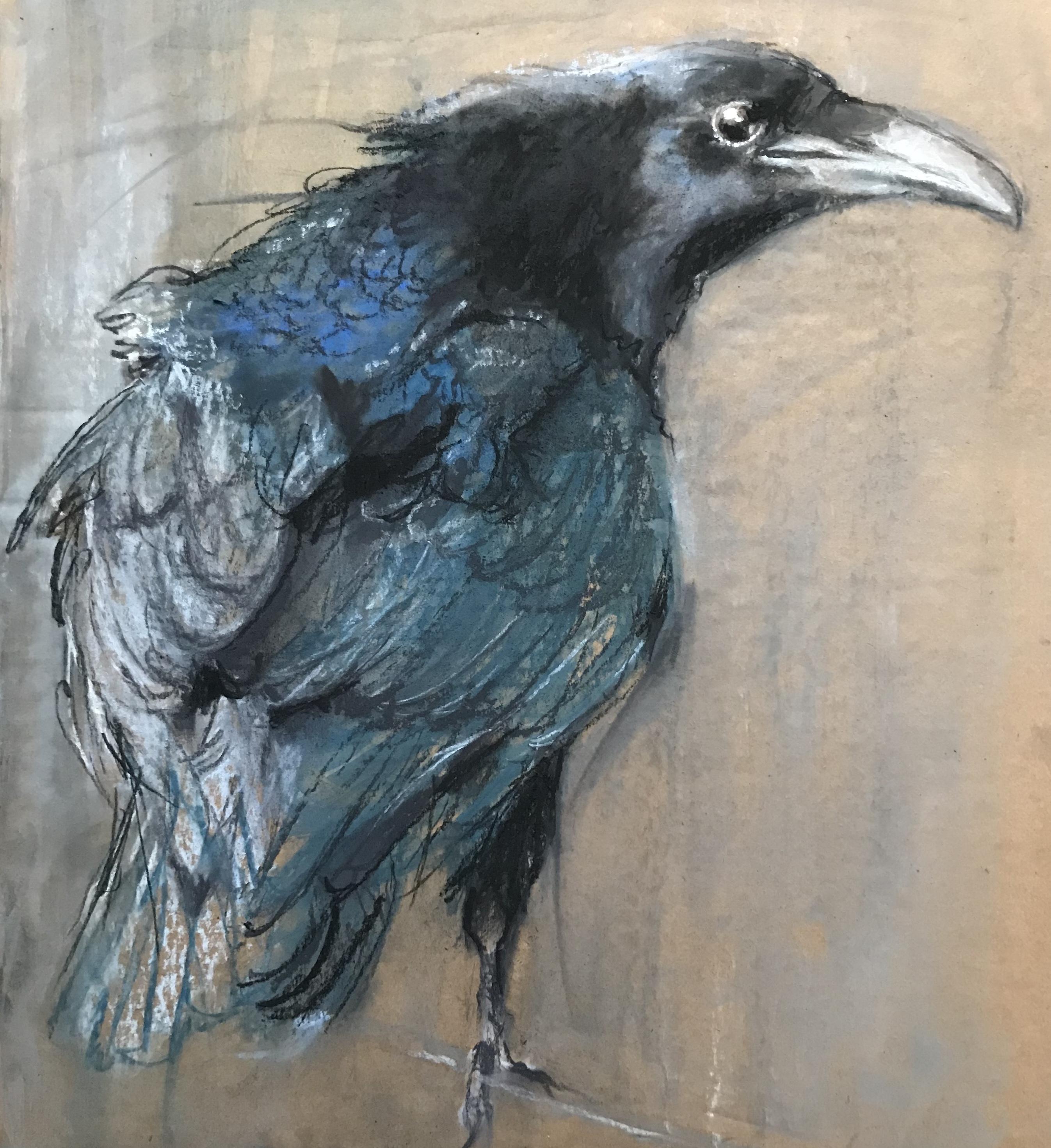 254- Raven/pastel/houtskool 45x45cm