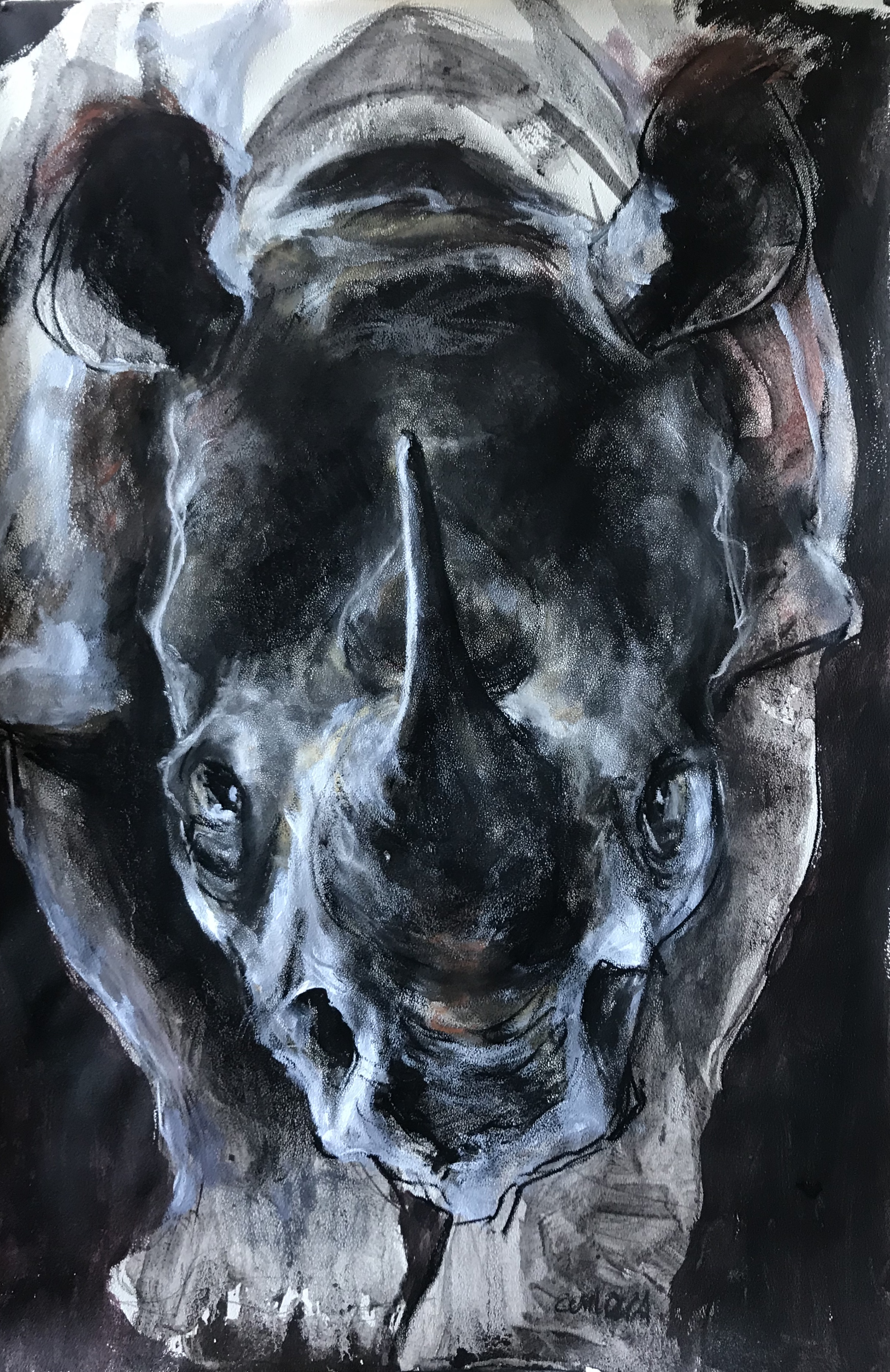 257-Rhino/mixed media 50x75cm
