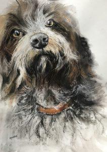253-doggy aquarel/pastel 30x40cm