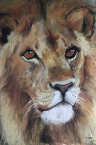 262-Leo gouache/pastel 30x40cm